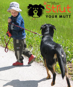 Strut-Your-Mutt-2013